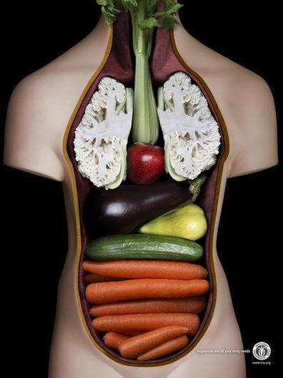 32305443845 7116e9edc2 z 396x530 - Do I have to stay on a limited diet forever?
