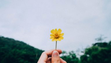 kawin harasai 221616 unsplash 382x218 - Want to be happier? Why you should practice gratitude