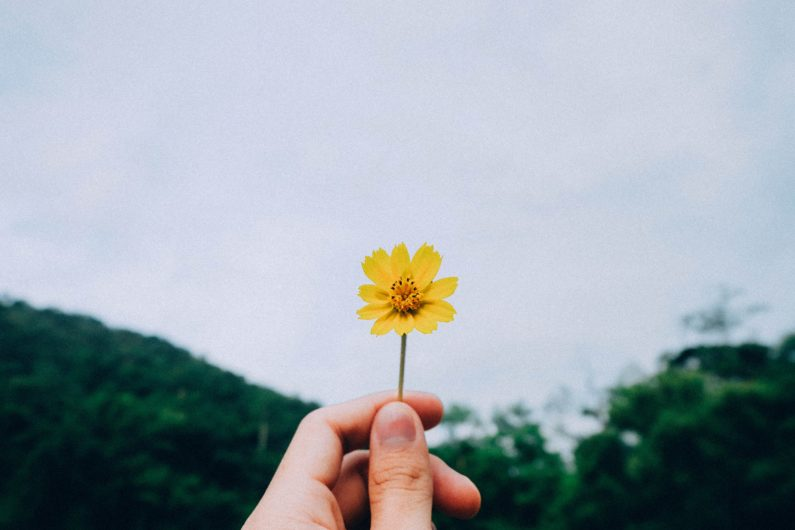 kawin harasai 221616 unsplash 795x530 - Want to be happier? Why you should practice gratitude