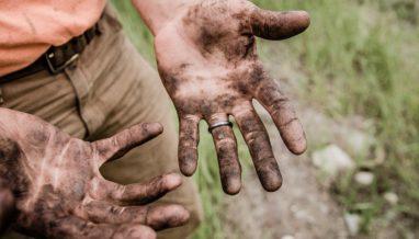 jesse orrico 184803 unsplash 382x218 - How effective are soil based probiotics?